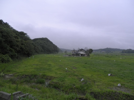 The view inland from the base of the knoll