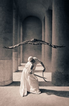 Clare and her Gyrfalcon
